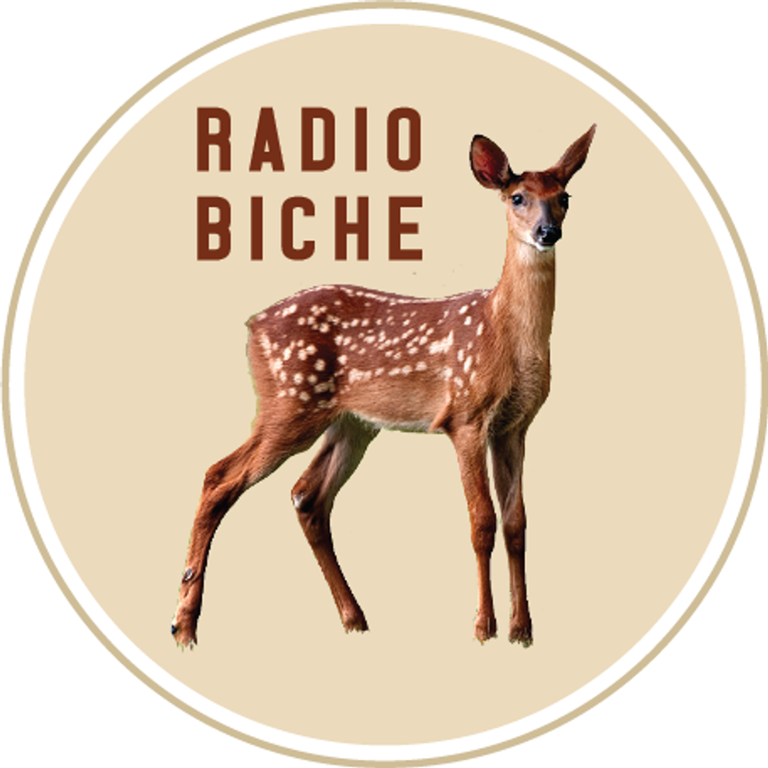 Photo de l'émission Radio Biche